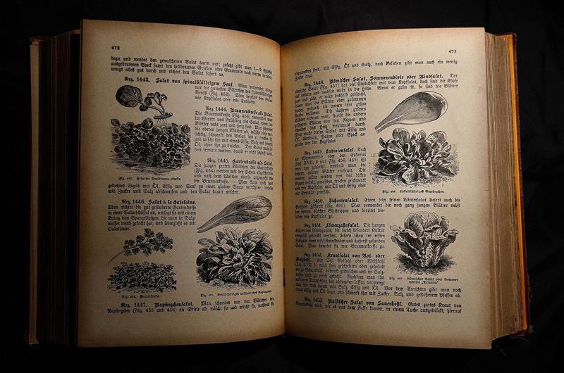 libro di ricette antico aperto e stampato in bianco e nero