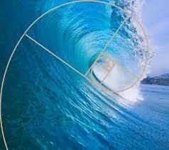 la spirale della golden ratio che si presenta in un'onda marina