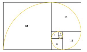creazione della spirale che attraversa i rettangoli e i quadrati della sezione aurea